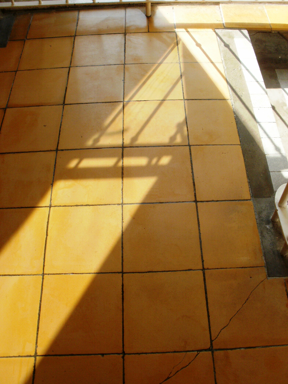 Yellow Ceramic Tiles After Cleaning in Poole
